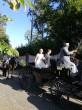 Hochzeit-Miriam_0023