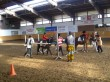 karnevalscup20110064