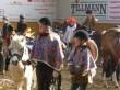 karnevalscup20110081